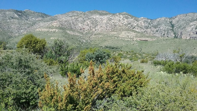 View of the Guadalupe Mountains