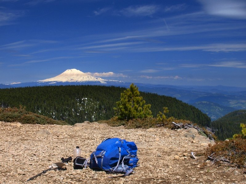 Mount Adams from Green Point Mountain