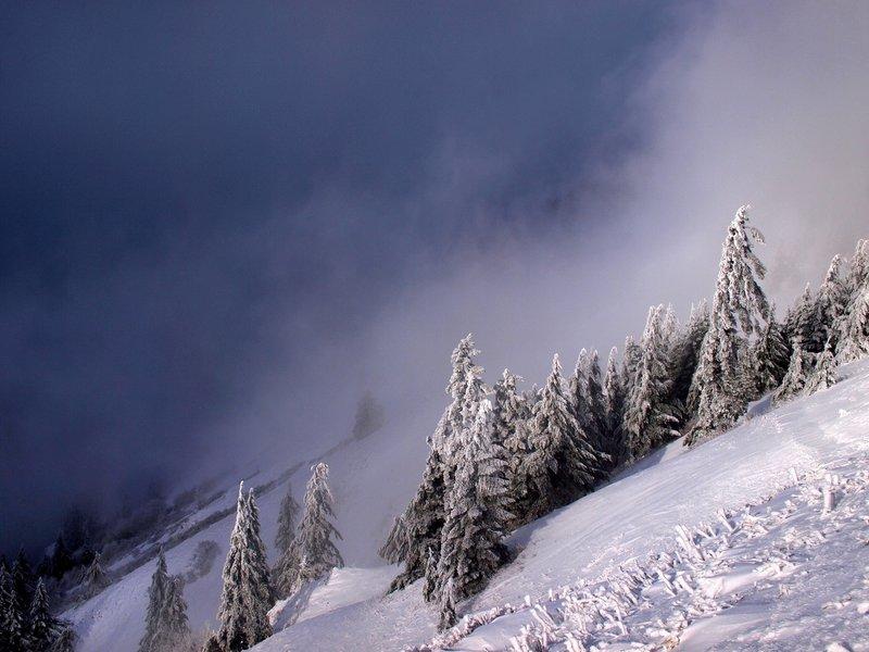 The tie trail in winter