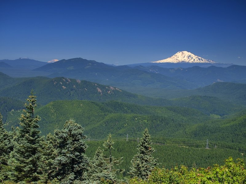 Mt. Rainier and Mt. Adams from Augspurger