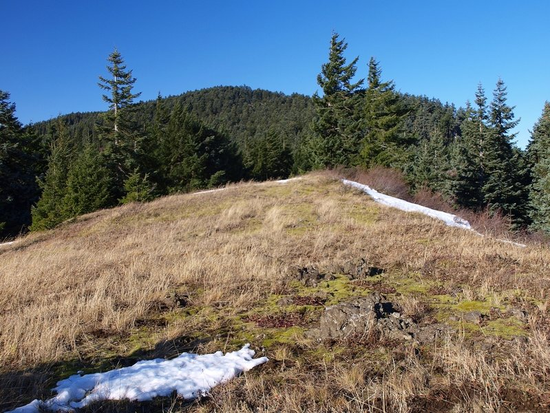 Along the Augspurger Trail