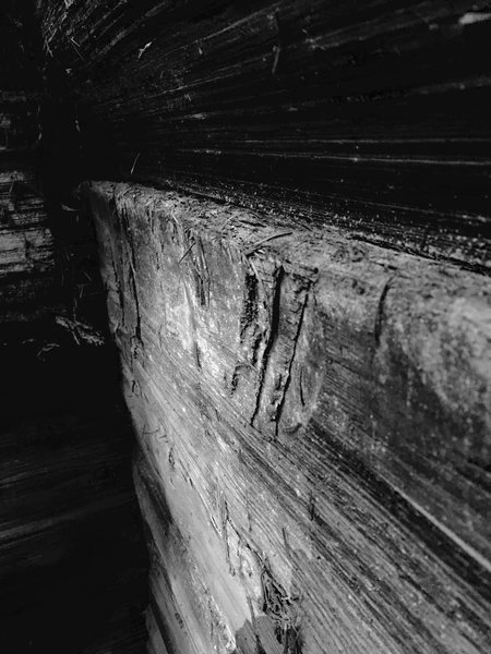 You can still see the marks left by the axes, used by the pioneers of old to split the logs.