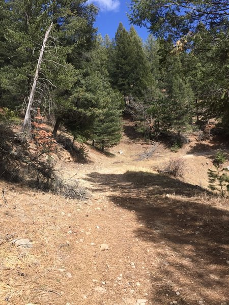 trail starts off nice but gets rockier as you go