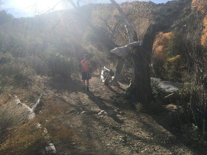 Taking a break in Horsethief Creek