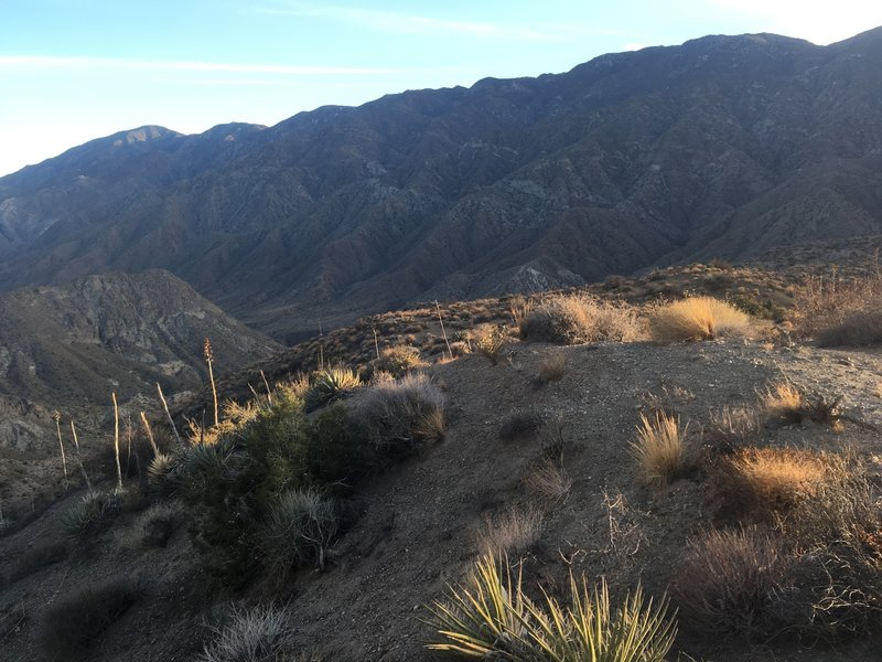 Starting the steep descent into Martinez Canyon.