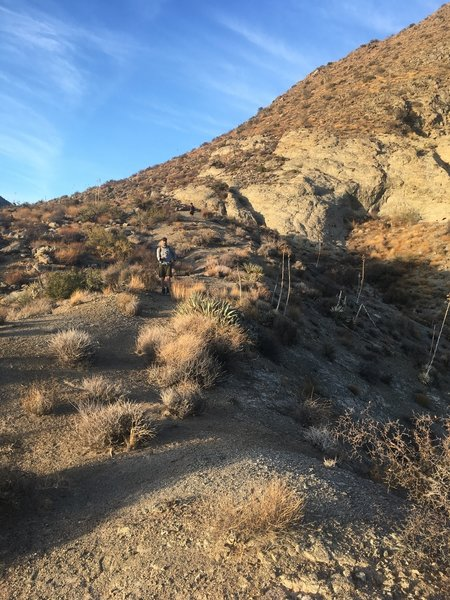 Just before the steepest part of the descent into Martinez Canyon.