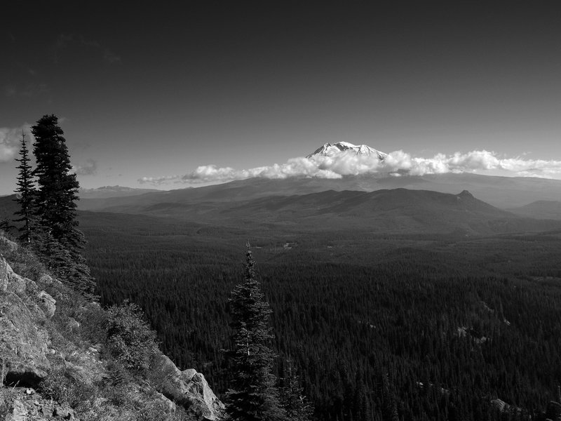 Mount Adams from the Cultus Creek Trail