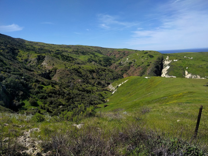 Scorpion Canyon Loop Trail.