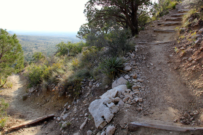 This is a switchback on the Guadalupe Peak Trail.
