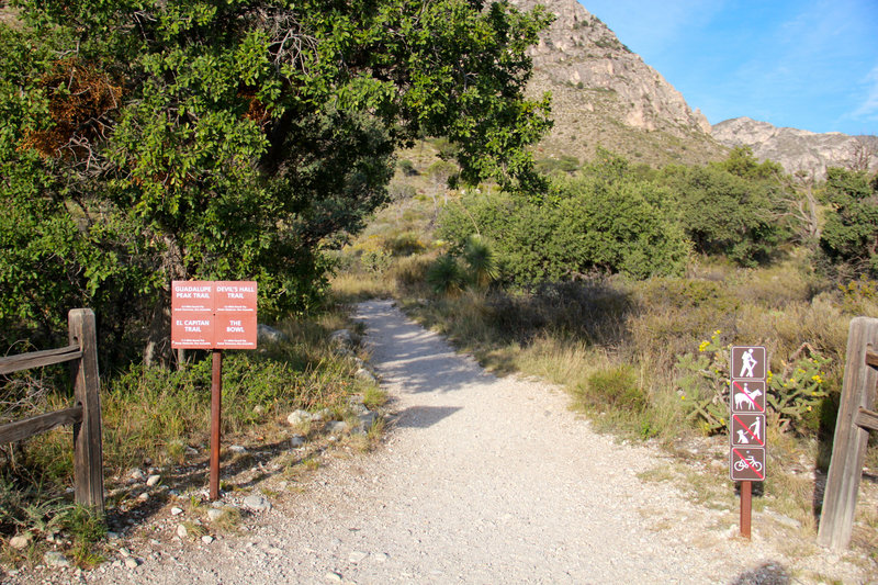 Begin Guadalupe Peak Trail in the morning.
