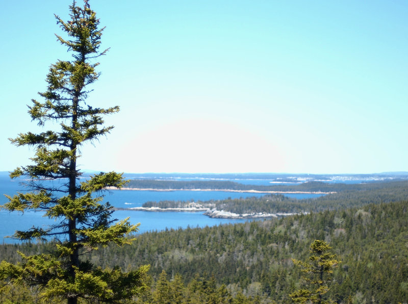View toward the town landing and Duck Harbor Campground from the top of Duck Harbor Mountain