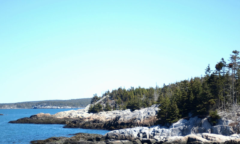 Looking back along the trail to Duck Harbor.