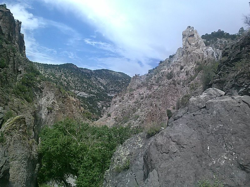 Looking east into the canyon.