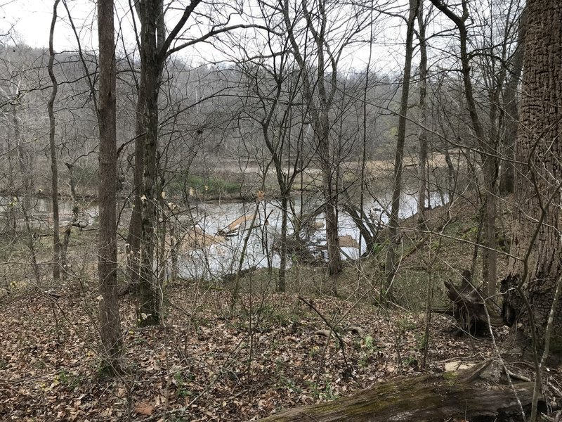 View of Shoal Creek from Lawson Trail Loop