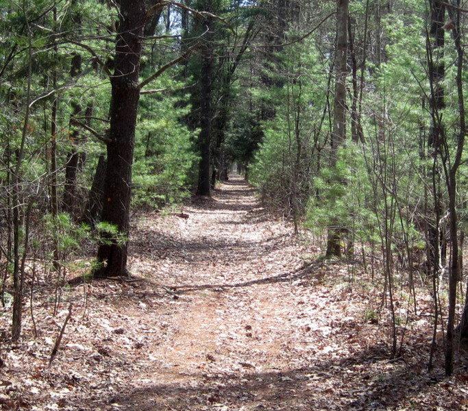 Nashua River Trail