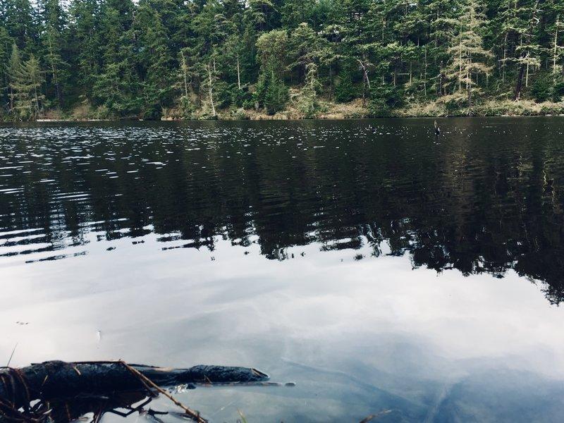 Pondilla Lake