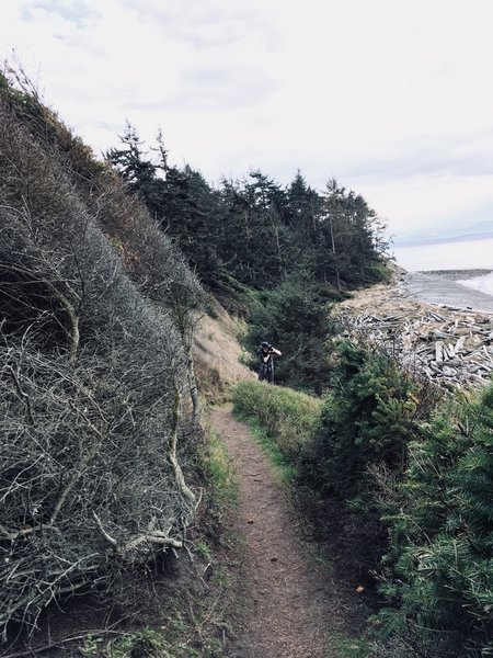 The trail winding down the bluff.