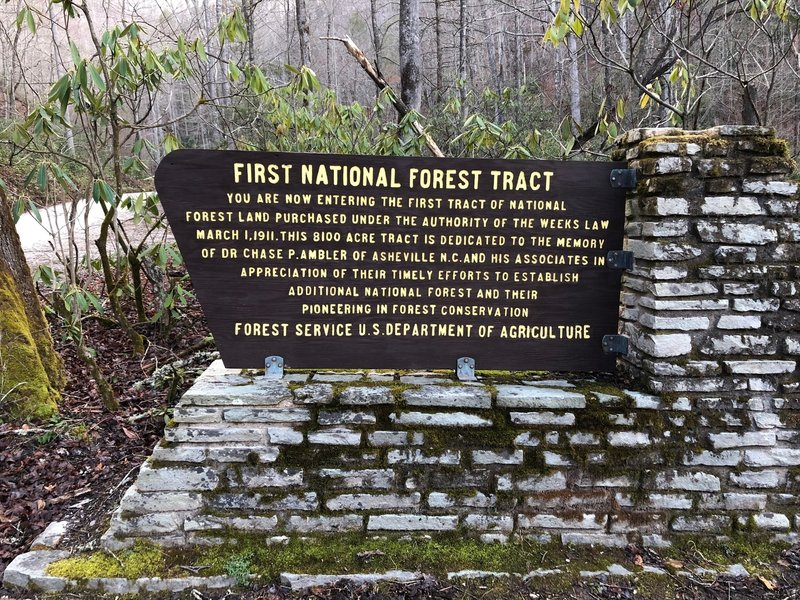 History of the Hickory Branch / Leadmine Gap / Snooks Nose Trails