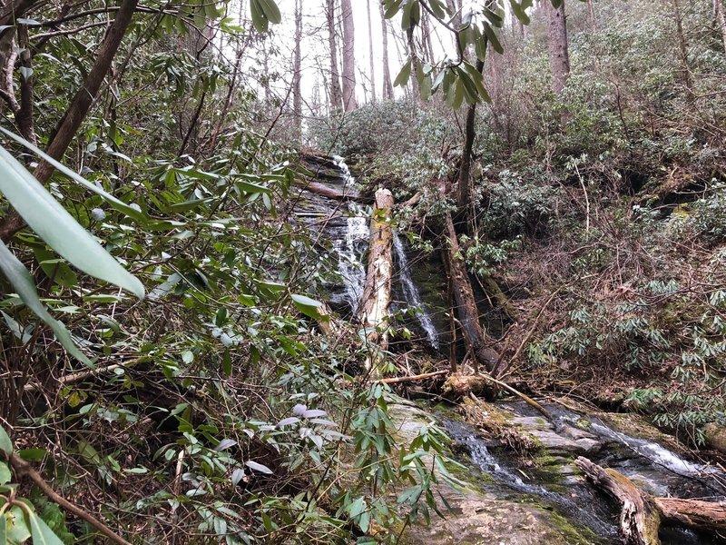Upper Hickory Branch Falls