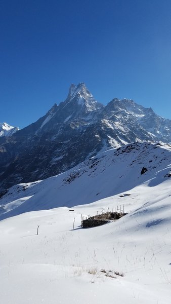 Mt. Machapuchare (Fishtail mountain)