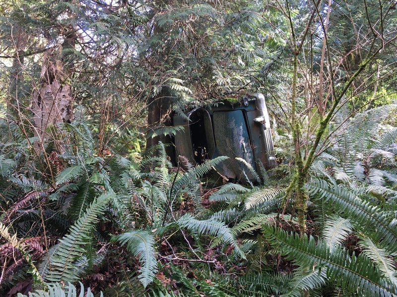 The old wrecked car off of Bluff Trail