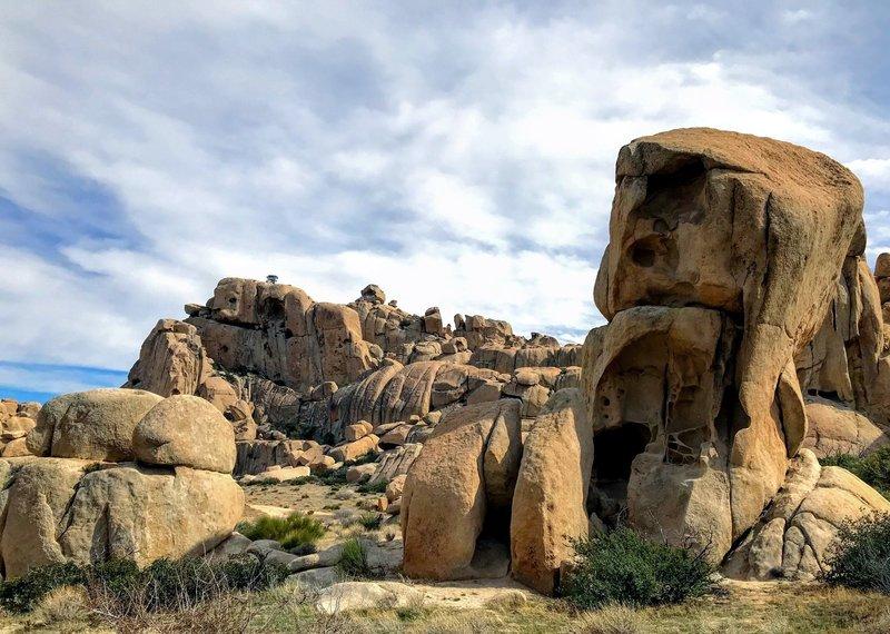 Skull-like rock formation