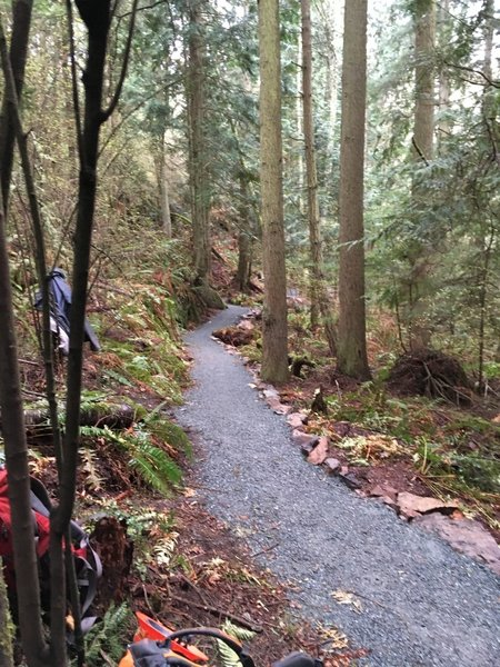 Porpoise Point Trail.