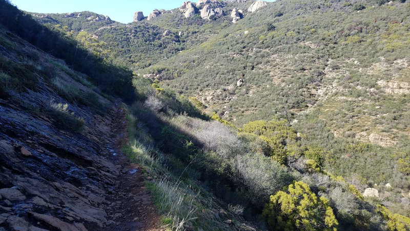Path against side of mountain. Has small amounts of running water coming down mountain, making trail muddy