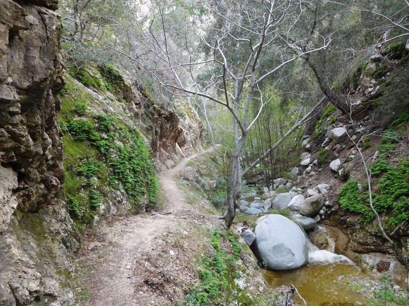 Bear Canyon Trail near Arroyo Seco