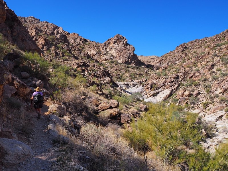 On the Ford Canyon Trail