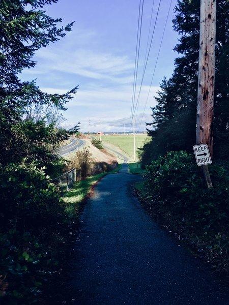The trail as it dips unto Ebey's Prairie.