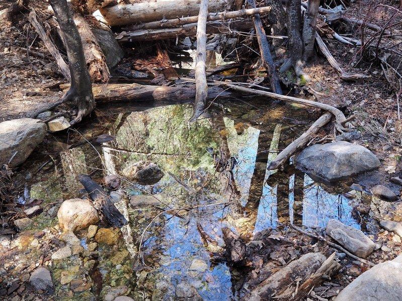 The creek in Marshall Gulch