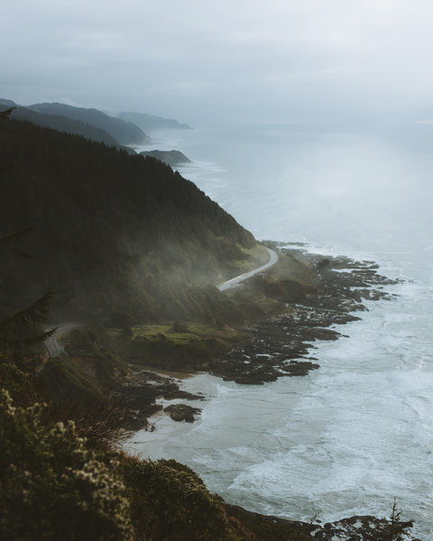 A view from the trail at Cape Perpetua.