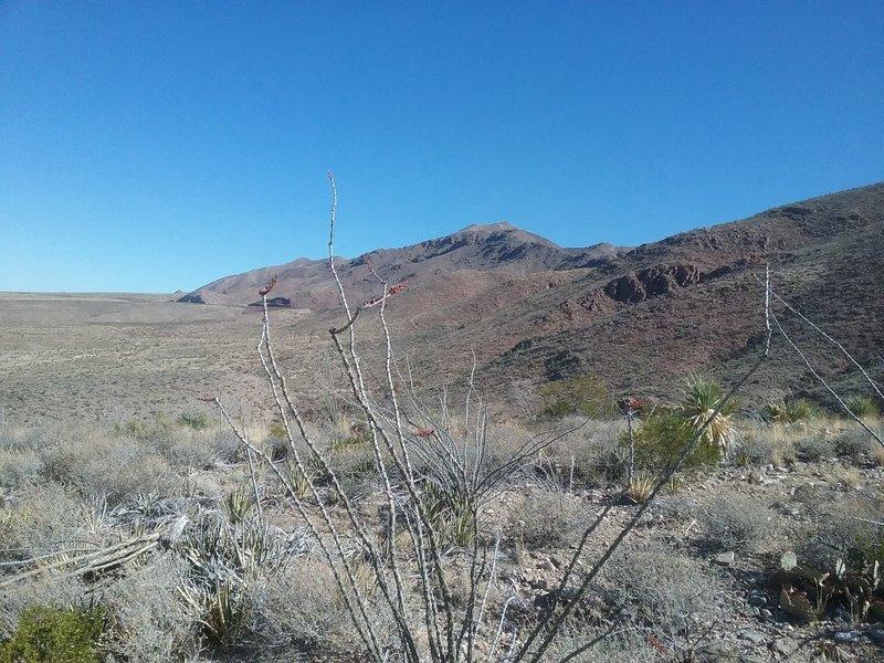 Looking NE towards North Franklin Mountain Peak