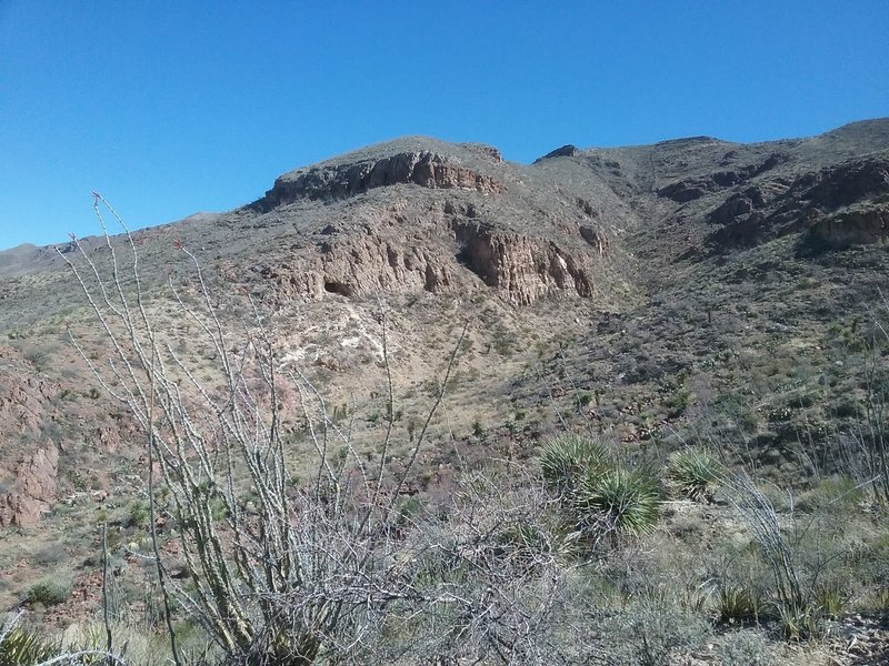 View of the arroyo and the Franklin Mountains