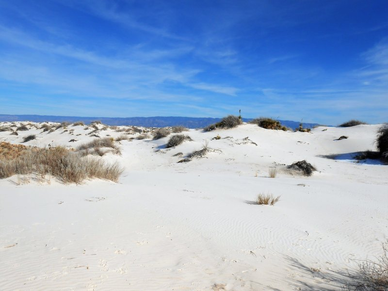 View of Dunes from Boardwalk