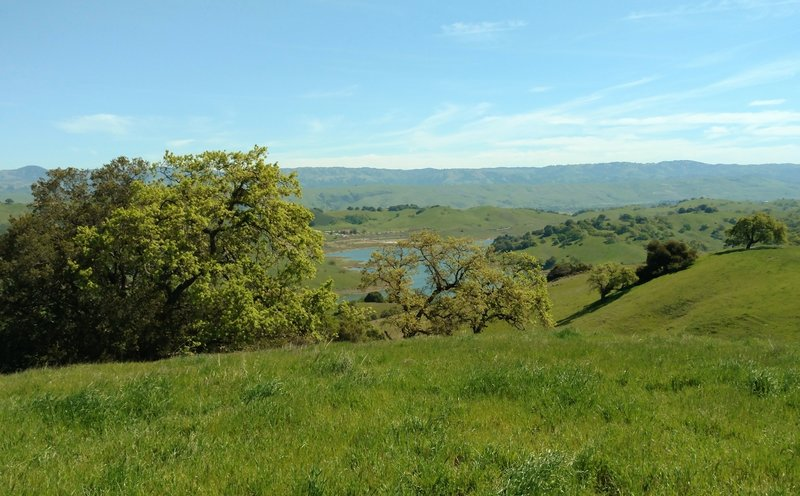Calero Reservoir and the Diablo Range in the distance can be seen to the northeast from high on Vista del Oro Trail.