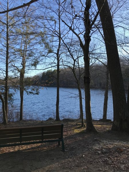 Lots of benches with great views around Spaulding Pond