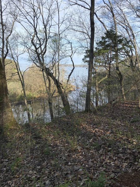 View of the Tennessee River from the trail