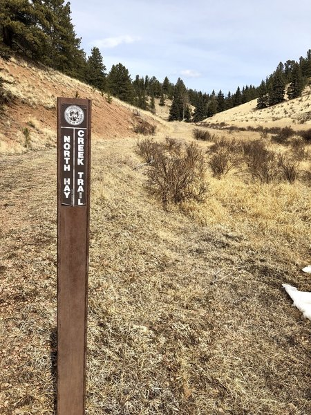 Your cue to take the left fork onto North Hay Creek Trail