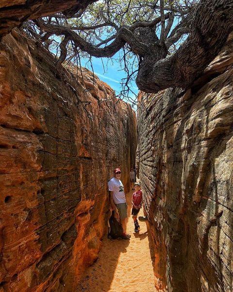 Hidden Petroglyphs and Slot Canyon