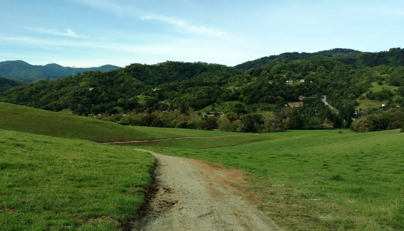 The historic village of New Almaden nestled in the wooded hills below, as seen from Almaden Trail. The Santa Cruz Mountains are on the left in the distance.