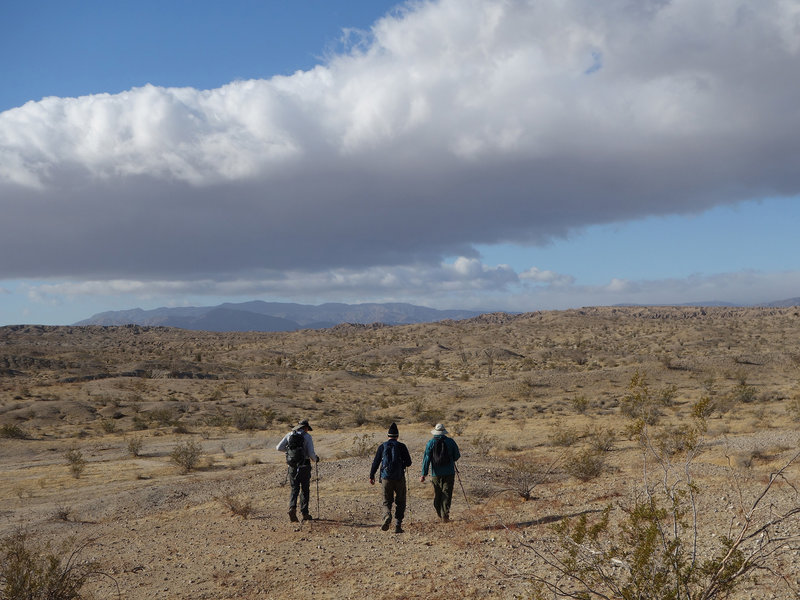 Hikers crossing the desert to Fonts Point.