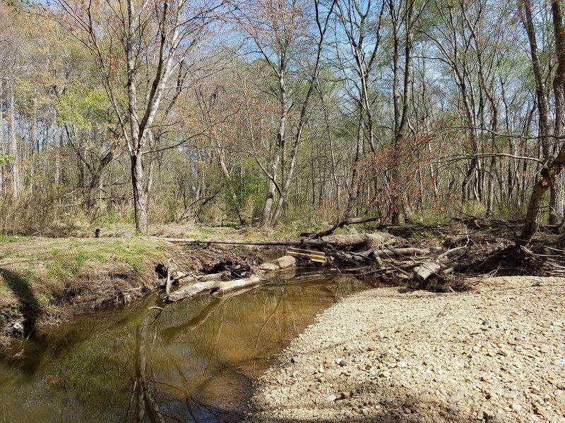 Lake Raleigh creek crossing.