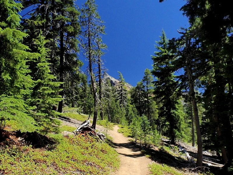 Mount Thielsen from the trail.
