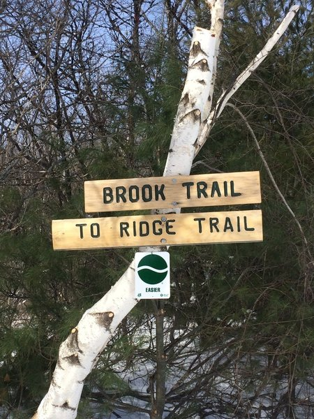 Brook Trail sign.
