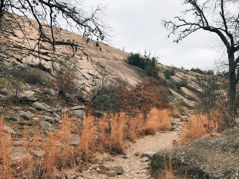 Beginning of Echo Canyon trail, southbound (February).