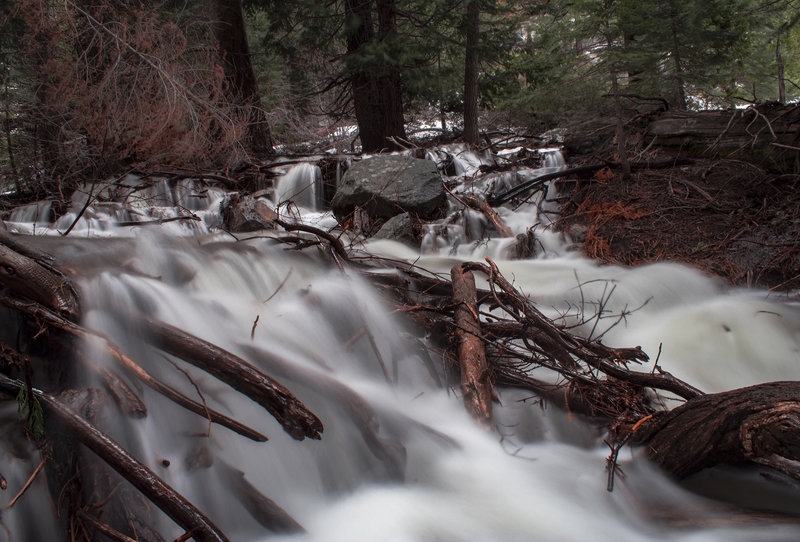 Stream crossings during extremely high water level period. Waterfall flowed down from Peak 8417 and flooded forest.