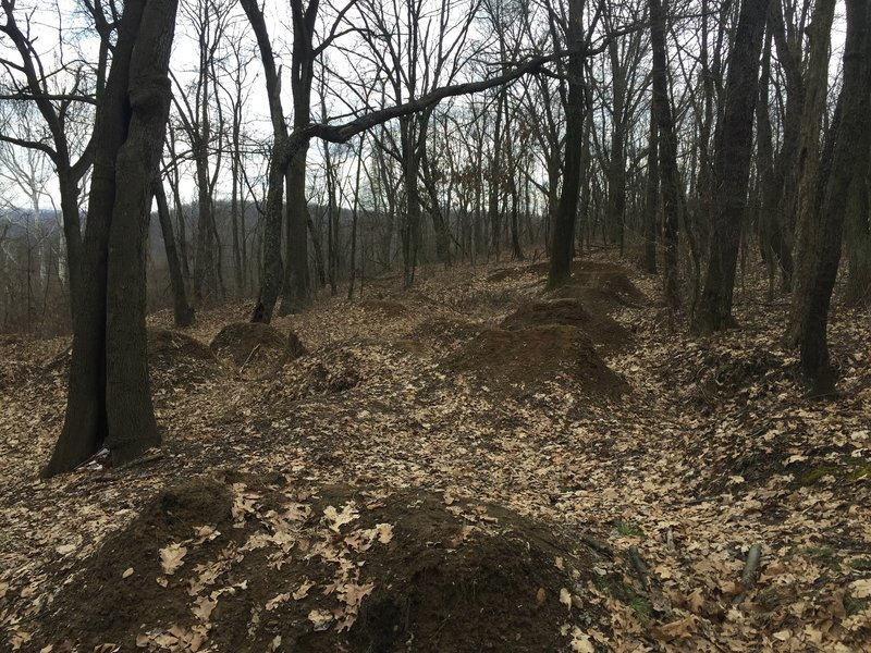 Old dirt jump track