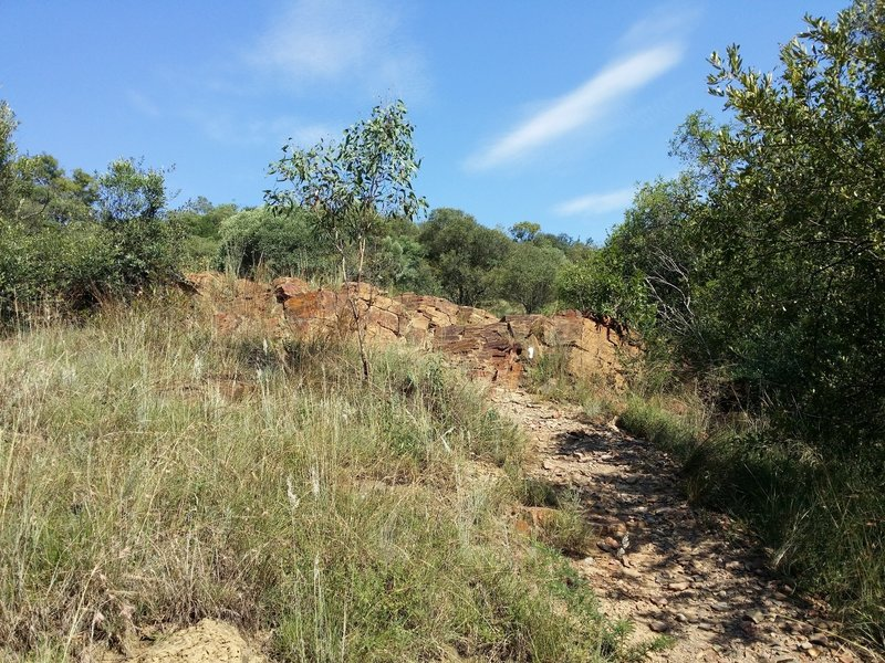 A view of the starting ascent on the Zebra trail.